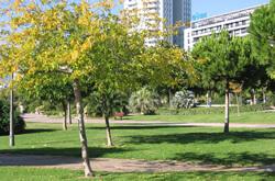 Parco Turia di Valencia
