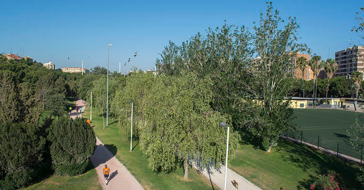 Giardini del Turia - Guida Valencia