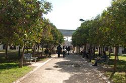 Passeggiata nei giardini del Turia